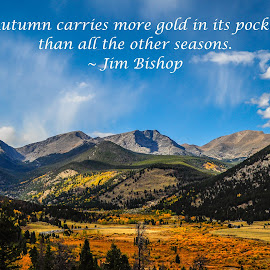 Autumn Carries More Gold In Its Pocket by Jennifer McWhirt - Typography Quotes & Sentences ( jim bishop, quotes, photographybyjenmcwhirt.com, autumn, fall, gold, typography, aspen, colorado rockies )