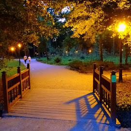 Evening in Maksimir by Tihomir Beller - City,  Street & Park  City Parks ( maksimir, park, croatia, zagreb, city )