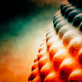Orbit by Rory McDonald - Digital Art Abstract ( abstaract, shades, colourful, art, light )