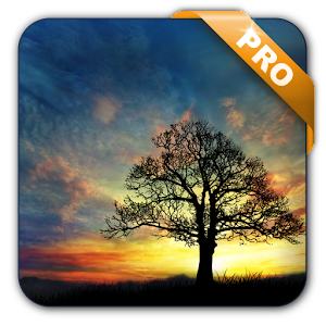 Sunset Hill Pro Live Wallpaper APK Cracked Download