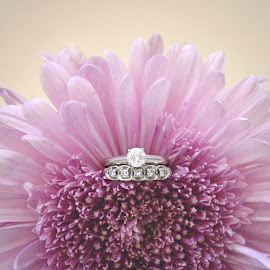 With This Ring by Amanda Hunter - Wedding Details ( purple, wedding, pink, rings, flowers )