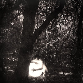 nude with light by Jim Oakes - Nudes & Boudoir Artistic Nude ( nude, light, woods, daylight )