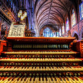 GO AHEAD AND PLAY  by Michael Rey - Buildings & Architecture Other Interior ( minnesota, musical instrument, church, minneapolis, cathedral, interior architecture )