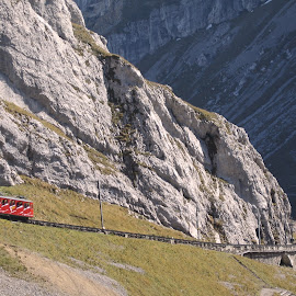 The train by William Lanza - Transportation Other ( mountains, altitude, trai, mountain slope, transportation, scenery,  )