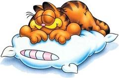 garfield_dormindo