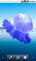 Screenshot of Jellyfish Sticker