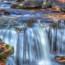 by Jeff London - Nature Up Close Water
