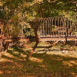 Hay rake by Ron Olivier - Landscapes Prairies, Meadows & Fields ( hay rake )