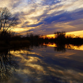 Awesome landscape reflection by Hytham Elbohy - Landscapes Sunsets & Sunrises