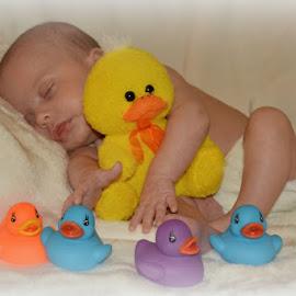 Sweet dreams, little one by Sherry Judd - Babies & Children Babies ( baby portrait, ducks, beauty, sweet dreams )
