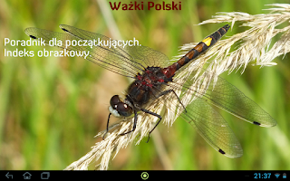 Screenshot of Ważki