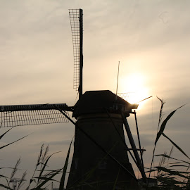 Windmills in sunset by Poornima Raju - Buildings & Architecture Other Exteriors ( sunset, holland, windmills )