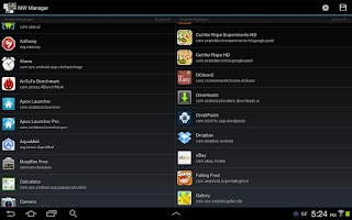 Screenshot of MultiWindow Manager(Note 10.1)