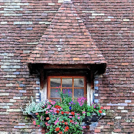 Window by Steven Aicinena - Buildings & Architecture Architectural Detail ( window, france,  )