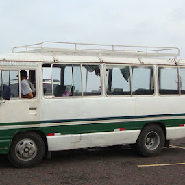 Bus by Donna Ferris - Transportation Automobiles