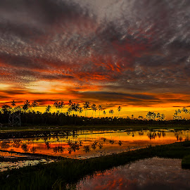Clouds reflection by Jee Cornelius - Landscapes Cloud Formations ( clouds, reflection, sky, afternoon, landscape,  )
