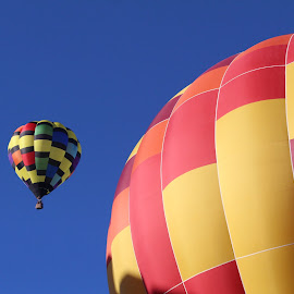Coming Down by Maureen Rueffer - News & Events Entertainment ( hot air balloon, colors, fiesta )