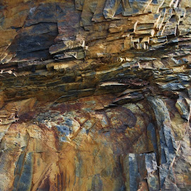 Slate by Nicola Walker - Nature Up Close Rock & Stone (  )