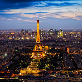 Eiffel Tower by night by Tomas Vocelka - City,  Street & Park  Night ( amazing, eiffel tower, paris, montparnasse tower, night, rooftop, view )