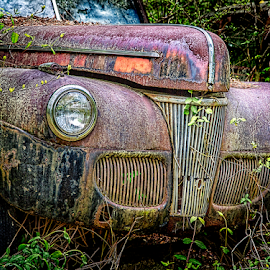 Old Ford by Marie Otero - Transportation Automobiles ( car, hdr, vintage, derelict, transportation, ford )