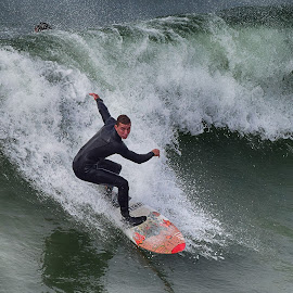 HB Surfer by Jose Matutina - Sports & Fitness Surfing ( orange county, surfer, california, sport, huntington beach,  )