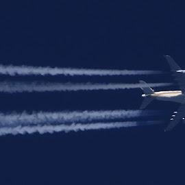 Singapure Airlines Airbus A380-841 by Bernarda Bizjak - Transportation Airplanes
