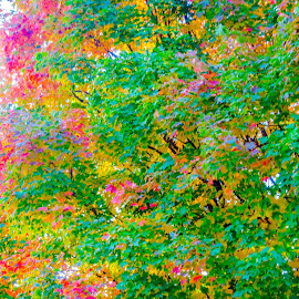 My Monet by Leslie Nu - Abstract Patterns ( abstract, patterns, autumn, leaves )