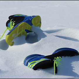by Miranda Diller - Novices Only Objects & Still Life ( mirandadillerphotography, tennisshoe, snow, alone, shoe, abandoned, mirandadiller )