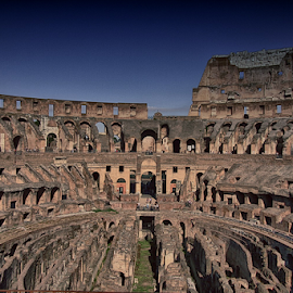 Colosseum, Rome by Fátima Leão - Buildings & Architecture Statues & Monuments ( colosseum, rome,  )
