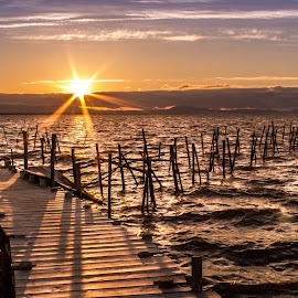 Carrasqueira on Sunset by Pedro Brás - Landscapes Sunsets & Sunrises