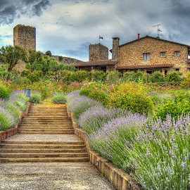 Monteriggioni by Cristian Peša - Buildings & Architecture Other Exteriors