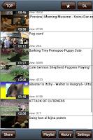 Screenshot of Clip Video: Video Download App