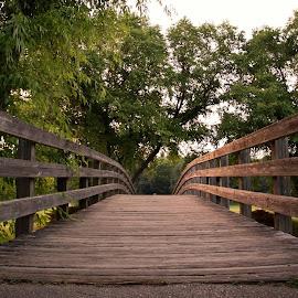 Zoo Bridge by Shane Milleur - City,  Street & Park  City Parks