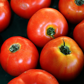I Wanna Tomato Sandwich! by Hannah Cohen - Nature Up Close Gardens & Produce ( salad, home grown, tomato, green, fruite, ontario, yellow, delicious, tomatoe, country, picton, veggatables, first harvest, red, farmer, fresh, farmer's market, county, sales, produce,  )