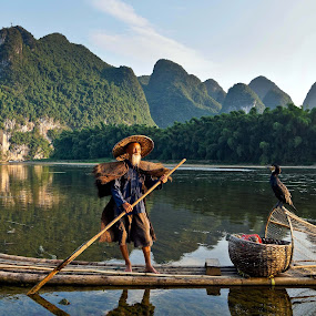 Fisherman  by Shalabh Sharma - People Professional People ( yangshuo, li river, cormorant fisherman, guilin, fisherman, guangxi, china )