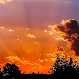 The sunset by Alexius van der Westhuizen - Landscapes Cloud Formations ( clouds, warm sun, orange, purple, blue, sunset,  )
