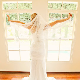 Angel by Alan Evans - Wedding Bride ( wedding photography, melbourne wedding photographer, wedding day, wedding, wedding veil, aj photography, wedding dress, getting ready, gippsland wedding photographer, bride )