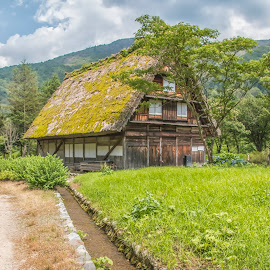 Thatched Roof  by Sue Matsunaga - Buildings & Architecture Public & Historical