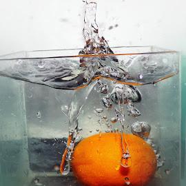 orange in the water by LADOCKi Elvira - Food & Drink Fruits & Vegetables ( range )