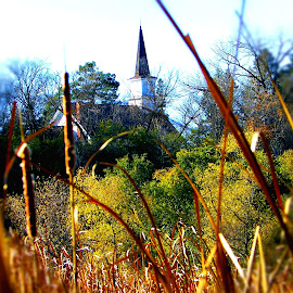 Church In The Meadows by Jennifer Schmidt - Nature Up Close Trees & Bushes ( cattails, french park, autumn colors, autumn color, fall color,  )