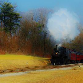 Landscape USA  by Anna Tripodi - Transportation Trains ( trees', awesome, county, train, shot,  )