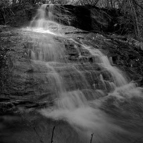 Sacred Falls by Chris Wilson - Black & White Landscapes ( water, waterfall, wester north carolina, trees, landscape, rocks, north carolina )