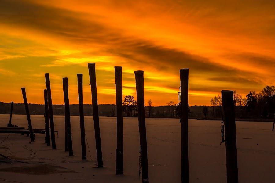 Sun over the lake by Daniel Sandberg - Landscapes Sunsets & Sunrises ( clouds, ice, frozen lake, sunrise, poles, sun,  )