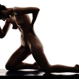 Silhouette by Vineet Johri - Nudes & Boudoir Artistic Nude ( vkumar photography, silhouette, madam bink, shadows, curves )