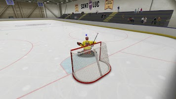 Screenshot of Virtual Goaltender