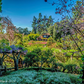 Japanese Garden in spring by Claes Rudbeck - Landscapes Travel