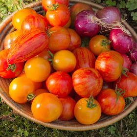 Tomatoes+Grass_hi-res.jpg