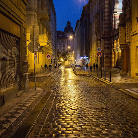 Prague at Night by Glenn Forrest - Buildings & Architecture Other Exteriors ( lights, blue sky, warm, street, night, gold, prague, cobblestone )