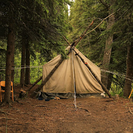 Tent in the woods! by Ron Olivier - Novices Only Objects & Still Life ( alaska, tent, woods )