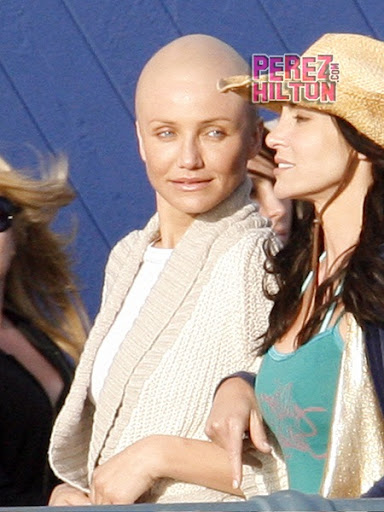 cameron diaz movies. Cameron Diaz Bald Head Picture